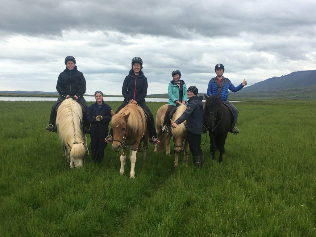 帶爸媽自駕環冰島攻略:農場騎冰島馬合影