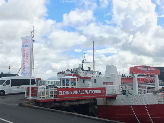 冰島雷克雅維克住宿CenterHotel Thingholt Elding賞鯨團上船處