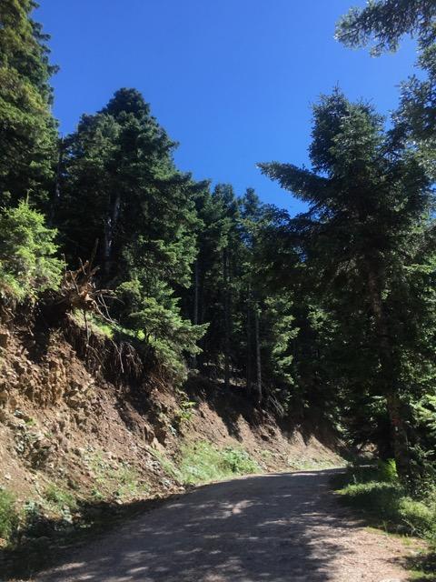 希臘天空之城Meteora住宿推薦 Montanema Handmade Village前往的石頭路
